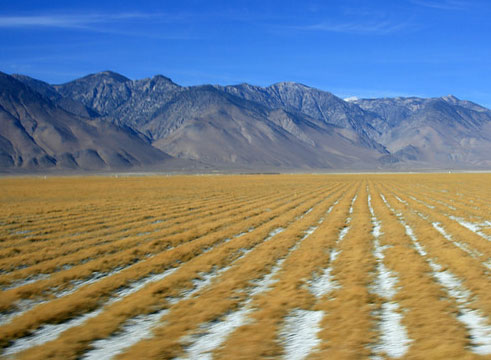 Owens Lake landscape