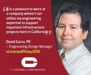 Professional Engineer with quote about engineering